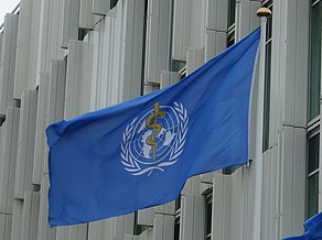 Flag of World Health Organization at UN City.JPG