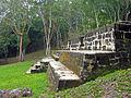 Flickr - archer10 (Dennis) - Belize-1183.jpg