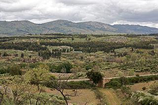 Serra de São Mamede Protected area in Portugal