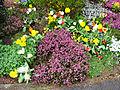Flickr - ronsaunders47 - ROAD-SIDE FLOWER DISPLAY. 1.jpg