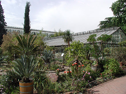 Flora Koeln flora und botanischer garten köln wikiwand