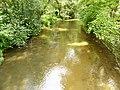 Fluss Teisnach in der Ortschaft Teisnach.jpg
