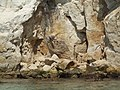 Fontane Bianche Beach Syracuse Italy - Creative Commons by gnuckx - panoramio (2).jpg