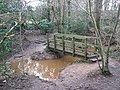 Footbridge, on Harpford Common - geograph.org.uk - 1130217.jpg