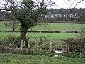Footbridge across the Tad Brook - geograph.org.uk - 1136620.jpg
