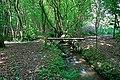 Footbridge over stream in Botley Wood - geograph.org.uk - 452219.jpg