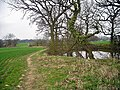Footpath beside a small pond. - geograph.org.uk - 1802432.jpg