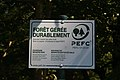 Forêt de Bon-Secours 12.jpg
