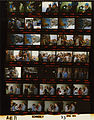 Ford A4171 NLGRF photo contact sheet (1975-04-23)(Gerald Ford Library).jpg