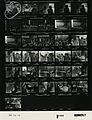 Ford B1094 NLGRF photo contact sheet (1976-08-16)(Gerald Ford Library).jpg