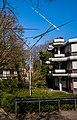 Four Lines Oblique (Freiburg im Breisgau) jm96414.jpg