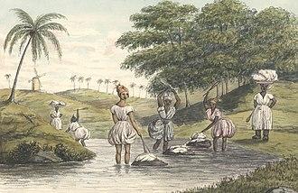 Frederik von Scholten - Image: Frederik von Scholten Bitling near West End, Santa Cruz