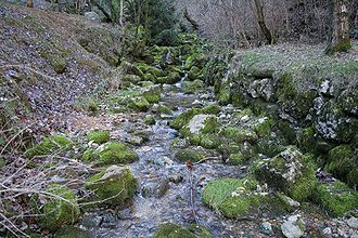 Cardener - Headwaters of the Cardener river