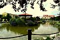 Gölet... - panoramio (1).jpg