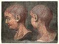 GAUTIER D'AGOTY; Anatomie de la tete Wellcome L0023746.jpg
