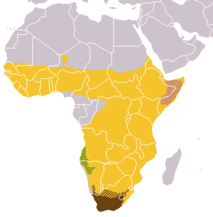 Galerella - Image: Galerella ranges