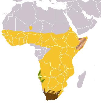 Galerella ranges