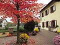 Gasthof Bienwaldmühle - Scheibenhardt (Pfalz) - panoramio (3).jpg