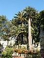 Genova-Castello d'Albertis-il parco.jpg