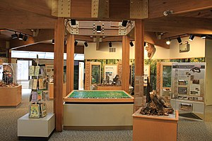 Waterloo State Recreation Area - Exhibits in the Discovery Center