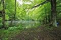 Geschützter Landschaftsbestandteil Schubertgrund in Sachsen. 2H1A1187WI.jpg