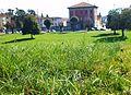 Gespa a les muralles de Lucca.JPG