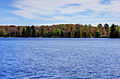 Gfp-michigan-twin-lakes-state-park-across-the-lake-3.jpg