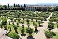 Giardino della villa medicea di castello, veduta 12.JPG
