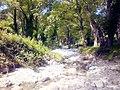 Gimello - creek - 01.jpg