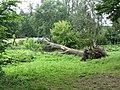 Glitiškės, Lithuania - panoramio (10).jpg