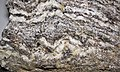 Gneiss (Joshimath Formation, Proterozoic; outcrop at Joshimath, Uttarakhand State, Indian Himalayas) 4 (26776955556).jpg