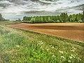 Good Morning - Druten NL (27079804375).jpg