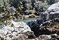 Gorges du Tarn a.jpg