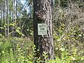 Grand Bay Wetlands Management Area sign 3.JPG