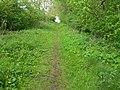 Grassy track off minor road - geograph.org.uk - 175509.jpg