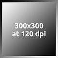 Gray300x300at120dpi.jpg