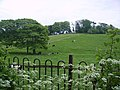 Grazing Land, Haverbreaks - geograph.org.uk - 810140.jpg
