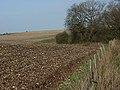Great Litchfield Down - geograph.org.uk - 305952.jpg