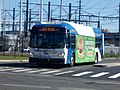 Greater Bridgeport Transit 4703.jpg