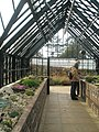Greenhouse within RHS Wisley - geograph.org.uk - 1562000.jpg