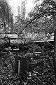 Großer Tiergarten in Berlin, Bild 7.jpg