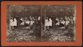 Group eating at table under trees, by E. M. Johnson 2.png