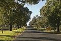Gulgong NSW 2852, Australia - panoramio (6).jpg