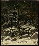 Gustave Courbet - Wooded Hillside in Winter - 24.454 - Museum of Fine Arts.jpg