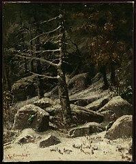 Wooded Hillside in Winter