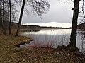 Höllerer See im März (4).jpg
