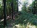 Hügelgrab Bahnriegl 1.jpg