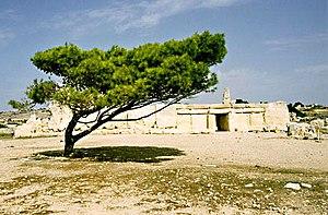 Ħaġar Qim - The Ħaġar Qim forecourt