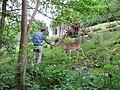 Hagen, Wildpark im Stadtwald.jpg