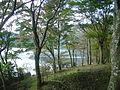 Hakone Ashinoko lake dsc05425.jpg